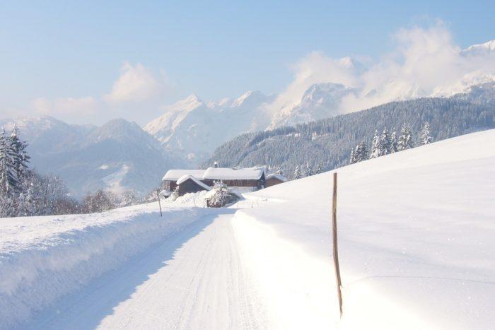 Langfeldgut - Bauernhofurlaub im Lammertal in Salzburg