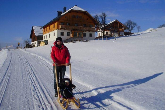 Windhofgut - Bauernhofurlaub im Lammertal in Salzburg